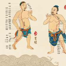 Traditional-Chinese-Medicine-Culture-Wall-Charts-and-Paintings-on-Large-Wall-Charts-of-Human-Meridians-and.jpg_q50